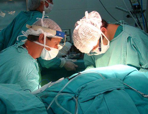 España supera su propio récord en trasplantes: 5.500 en 2019
